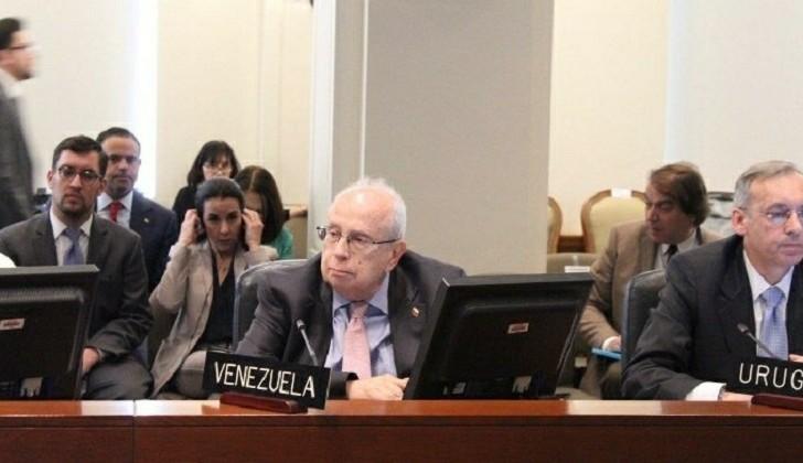 El representante de Juan Guaidó participó del Consejo Permanente de la OEA