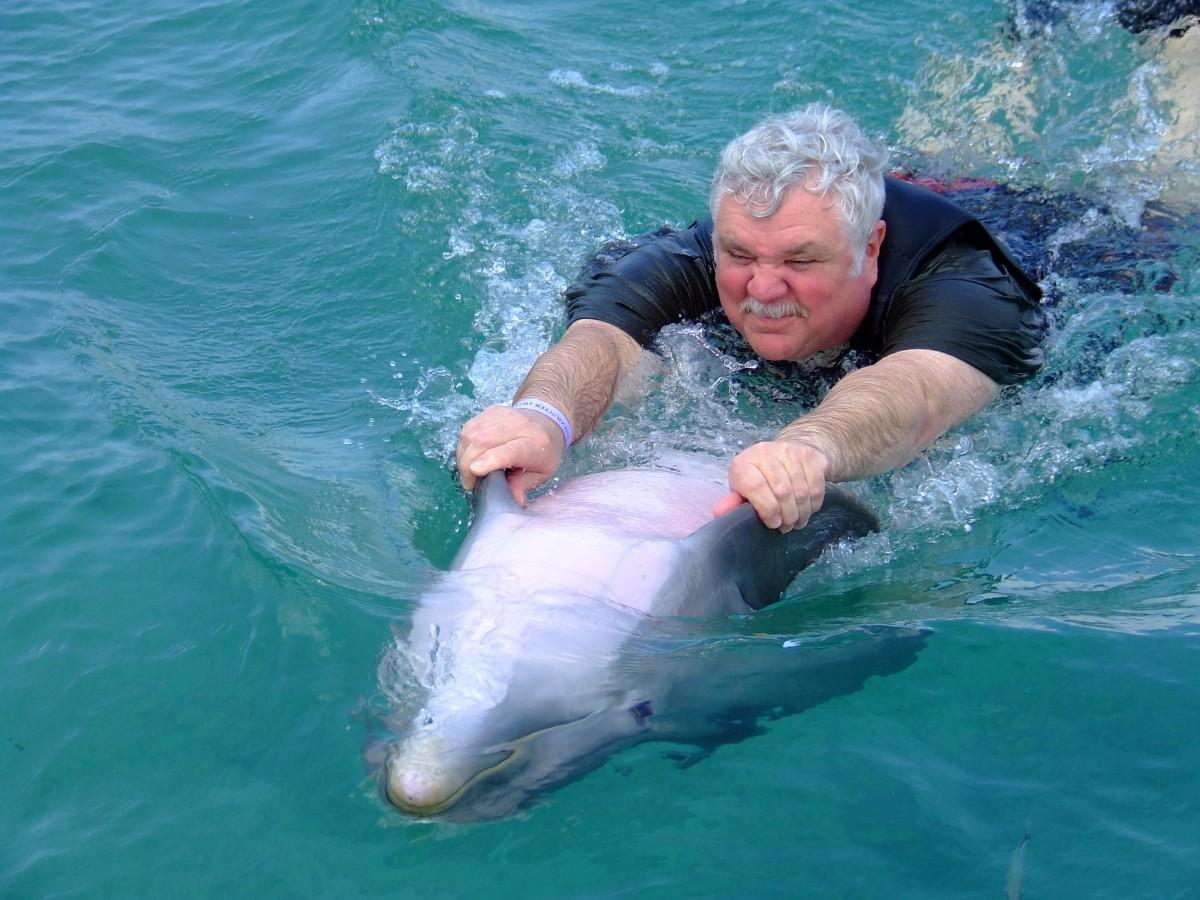 Un hombre adulto cuelga de las aletas de un delfín que nada boca arriba. Foto: Pixabay