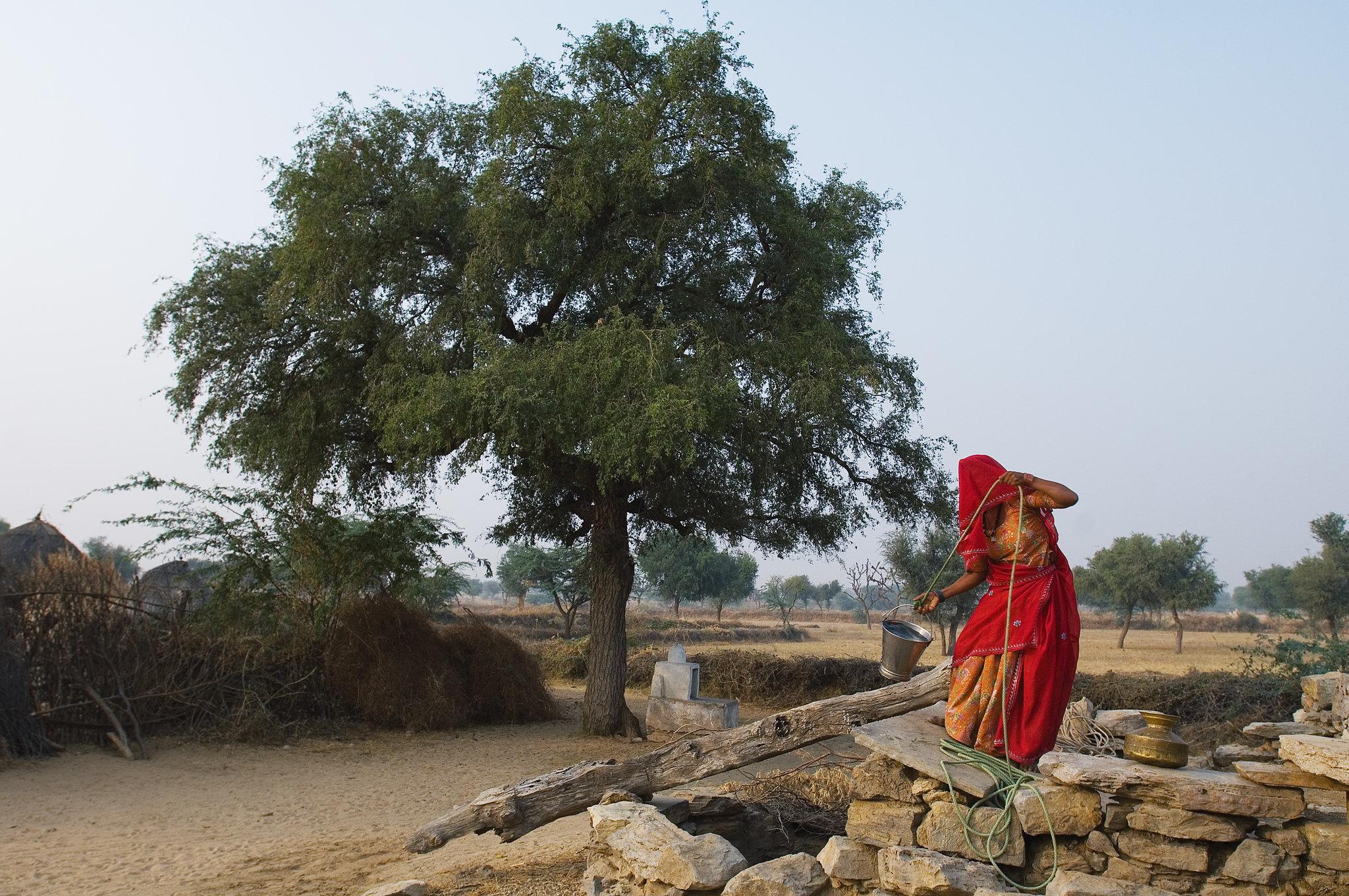 Una mujer saca agua de un pozo en Rajasthan. Foto: Knut-Erik Helle / Flickr