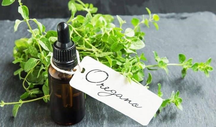 ¿Cómo limpiar el sistema respiratorio con aceite de orégano?