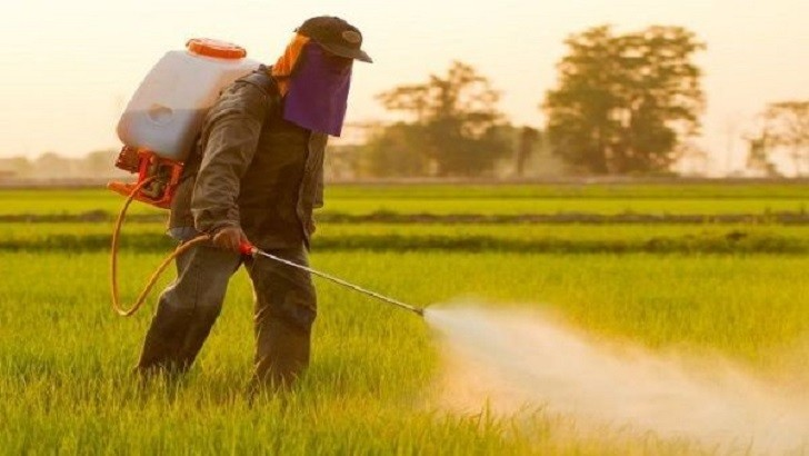 En 200 días, Brasil lanzó más agroquímicos que la Unión Europea en ocho años