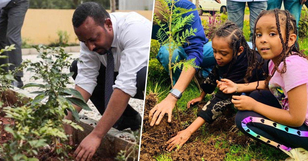 ethiopian_tree_planting_