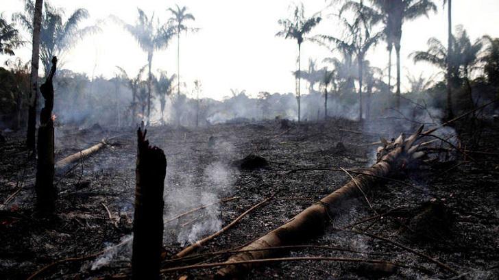 Bolsonaro culpa a las ONG por los incendios fuera de control en la Amazonia.