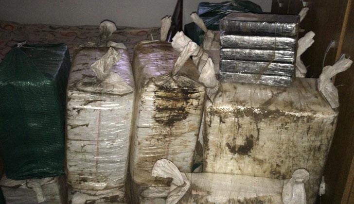 Incautación de droga en Parque del Plata. Foto: Ministerio del Interior.
